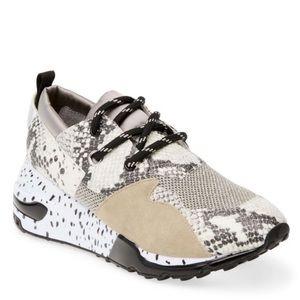 Steve Madden Cliff Platform Natural Snake Sneakers